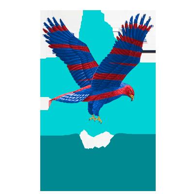 icaro_paraglider_aquila-bird